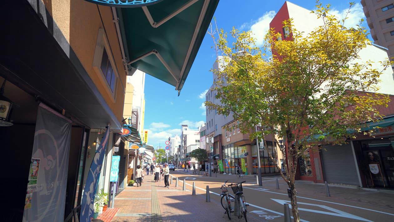Ropeway Shopping Street
