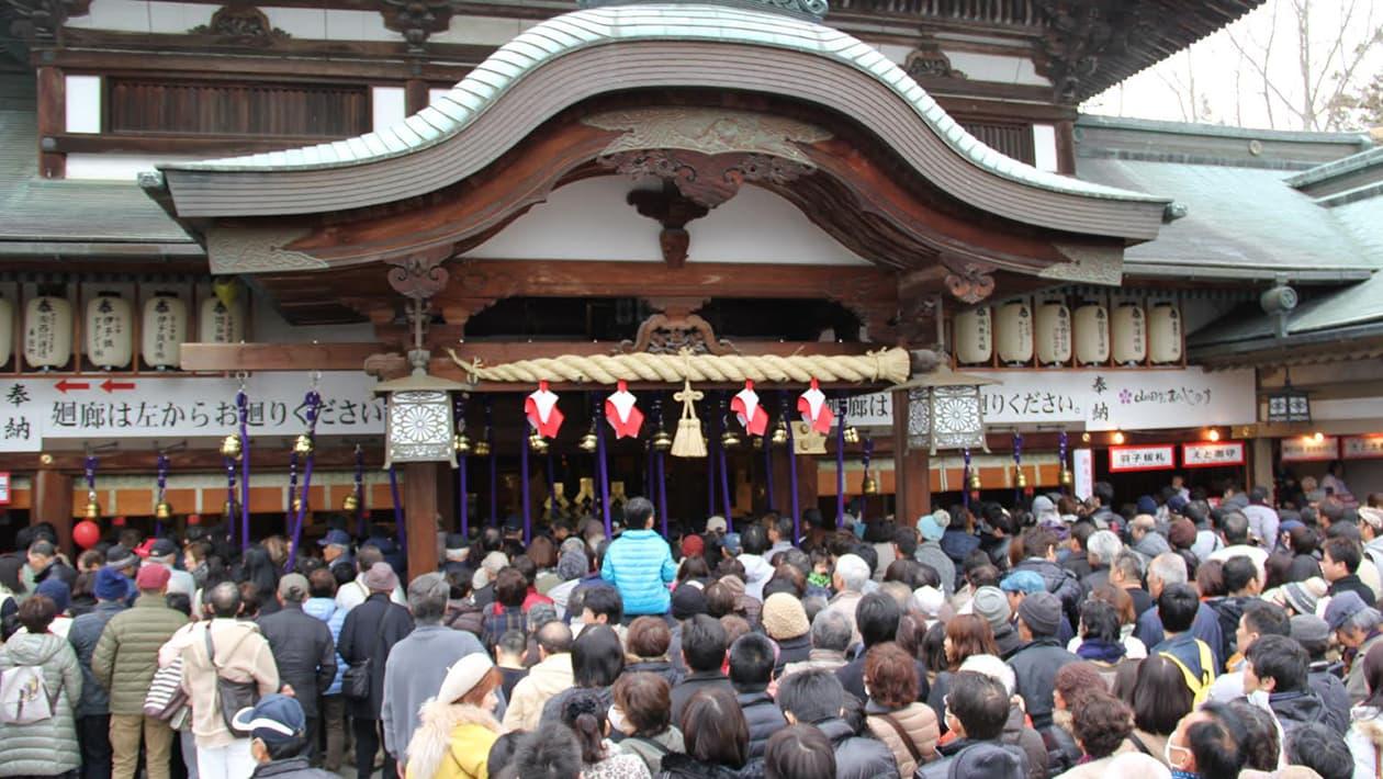 Tsubaki Festival