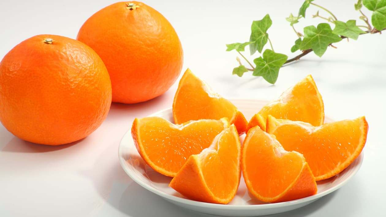 Citrus and mandarin oranges